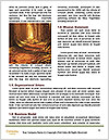 0000081374 Word Template - Page 4