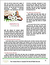 0000081376 Word Template - Page 4