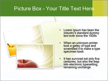 0000081377 PowerPoint Templates - Slide 20