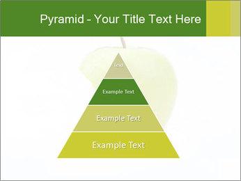 0000081377 PowerPoint Template - Slide 30