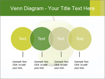 0000081377 PowerPoint Templates - Slide 32