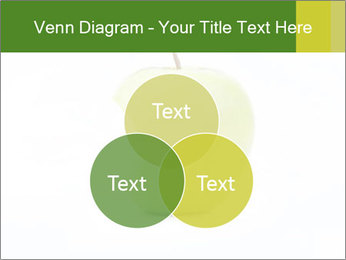 0000081377 PowerPoint Templates - Slide 33