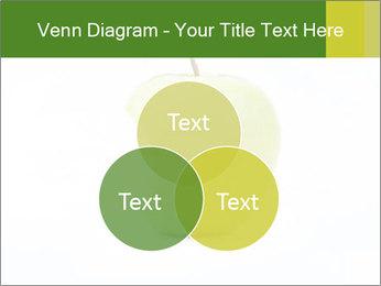 0000081377 PowerPoint Template - Slide 33