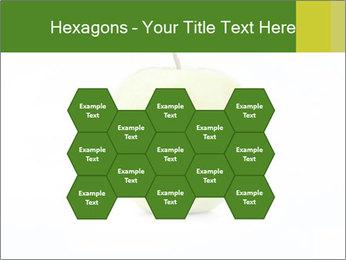0000081377 PowerPoint Template - Slide 44