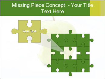 0000081377 PowerPoint Templates - Slide 45