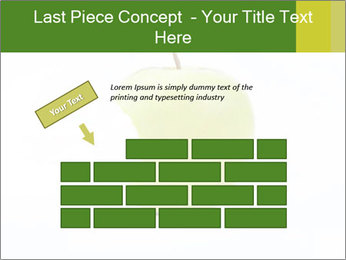 0000081377 PowerPoint Templates - Slide 46