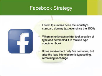 0000081377 PowerPoint Template - Slide 6