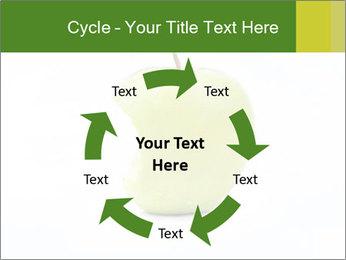 0000081377 PowerPoint Template - Slide 62