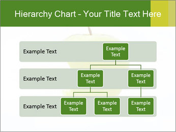 0000081377 PowerPoint Template - Slide 67