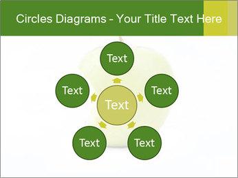 0000081377 PowerPoint Template - Slide 78