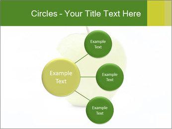 0000081377 PowerPoint Template - Slide 79