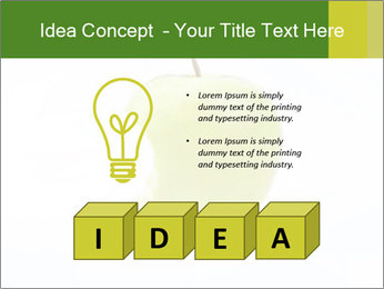 0000081377 PowerPoint Templates - Slide 80