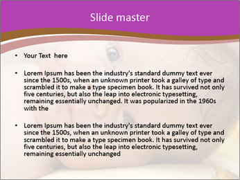 0000081382 PowerPoint Templates - Slide 2