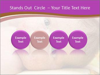 0000081382 PowerPoint Templates - Slide 76
