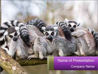 0000081383 PowerPoint Template