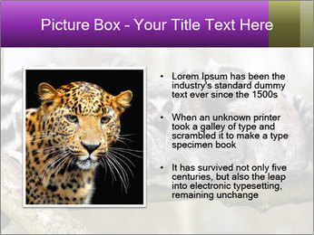 0000081383 PowerPoint Template - Slide 13