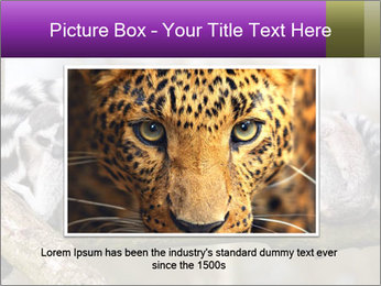 0000081383 PowerPoint Template - Slide 16