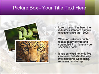 0000081383 PowerPoint Template - Slide 20