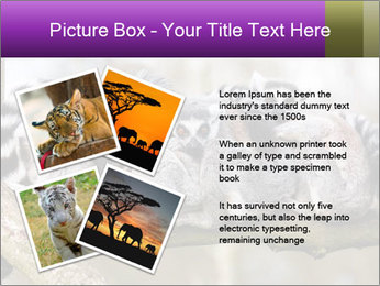 0000081383 PowerPoint Template - Slide 23