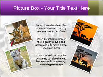 0000081383 PowerPoint Template - Slide 24