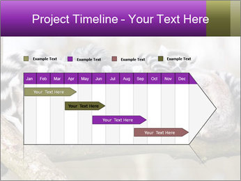0000081383 PowerPoint Template - Slide 25