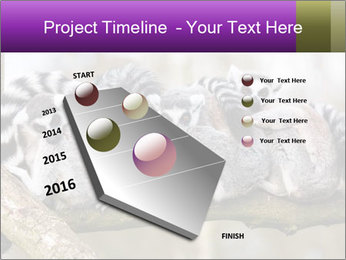 0000081383 PowerPoint Template - Slide 26