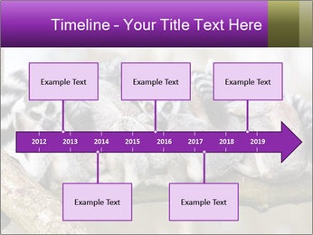 0000081383 PowerPoint Template - Slide 28