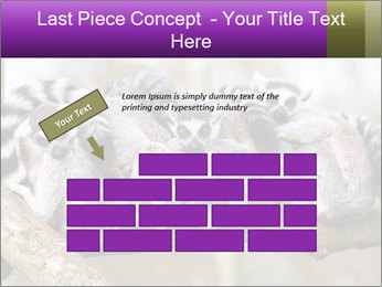 0000081383 PowerPoint Template - Slide 46