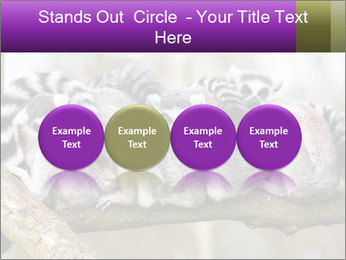 0000081383 PowerPoint Template - Slide 76