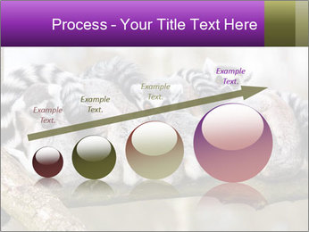 0000081383 PowerPoint Templates - Slide 87