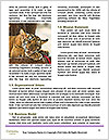0000081383 Word Templates - Page 4