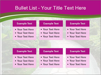 0000081384 PowerPoint Templates - Slide 56