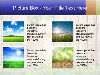0000081385 PowerPoint Templates - Slide 14