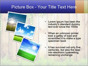 0000081385 PowerPoint Templates - Slide 17