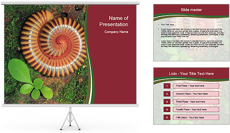0000081390 PowerPoint Template