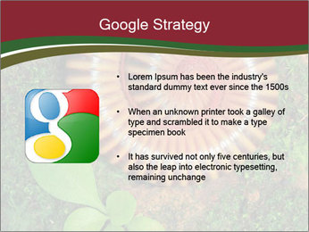 0000081390 PowerPoint Template - Slide 10