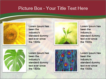 0000081390 PowerPoint Templates - Slide 14
