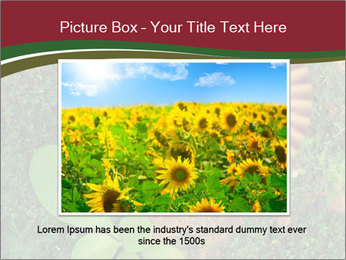 0000081390 PowerPoint Template - Slide 15