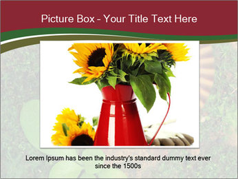 0000081390 PowerPoint Template - Slide 16