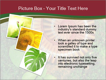 0000081390 PowerPoint Template - Slide 17