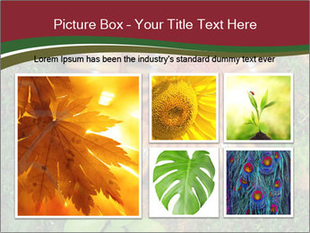 0000081390 PowerPoint Templates - Slide 19