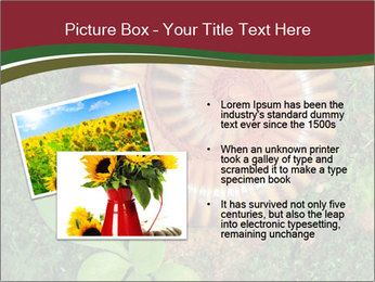 0000081390 PowerPoint Templates - Slide 20
