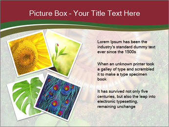 0000081390 PowerPoint Templates - Slide 23