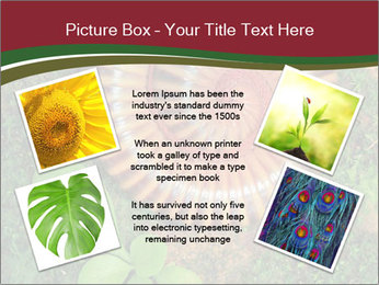 0000081390 PowerPoint Templates - Slide 24