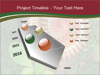 0000081390 PowerPoint Template - Slide 26