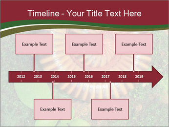 0000081390 PowerPoint Templates - Slide 28