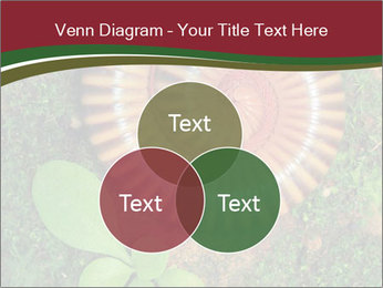 0000081390 PowerPoint Templates - Slide 33