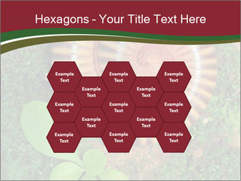 0000081390 PowerPoint Templates - Slide 44