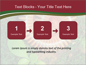 0000081390 PowerPoint Templates - Slide 71