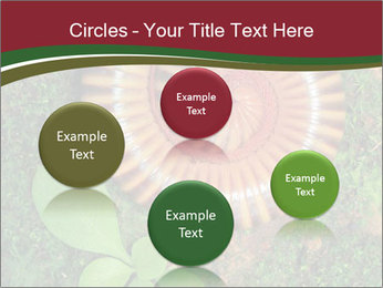 0000081390 PowerPoint Templates - Slide 77